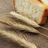 Bread and wheat ears Stock Images
