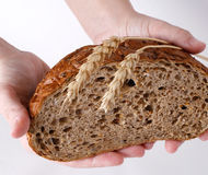Bread, wheat-ears and hands Royalty Free Stock Photography