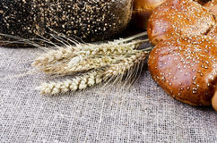 Bread and wheat ears lying on sacking Stock Photography