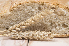 Bread and wheat ears Royalty Free Stock Images