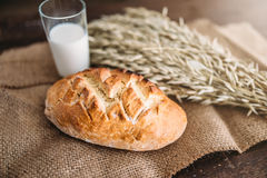 Bread, wheat and glass of milk, burlap background Royalty Free Stock Photos
