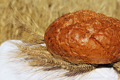 Bread and wheat outdoors Stock Image