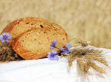 Bread and wheat outdoors Stock Photos