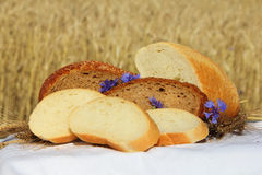 Bread and wheat outdoors Royalty Free Stock Photography