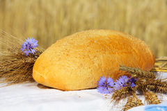 Bread and wheat outdoors Royalty Free Stock Photos