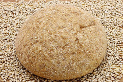 Bread and wheat seeds close-up Royalty Free Stock Images
