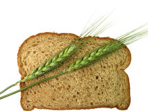 Bread and Wheat Spikes. Winter wheat spikes lay across a whole wheat slice of bread, pairing the raw grain and the end product stock photo