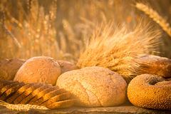 Bread and wheat on the wooden table Royalty Free Stock Image