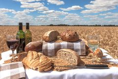 Bread and Wine in a Wheatfield Stock Image