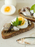 Bread With Anchovy Stock Photo