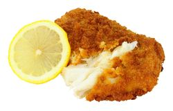 Breadcrumb Covered Cod Fish Fillet. Isolated on a white background Stock Images