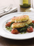 Breadcrumbed Mozzarella Cheese with Tomatoes Stock Images