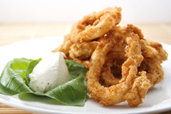 Breaded Calamari Rings Royalty Free Stock Photography