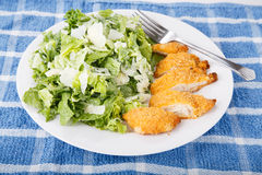 Breaded Chicken Breast and Caesar Salad. A tasty and nutritious meal of breaded chicken breas with a caesar salad Royalty Free Stock Photos