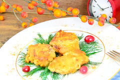Breaded Chicken Fillet with Herbs and Cranberries Stock Image