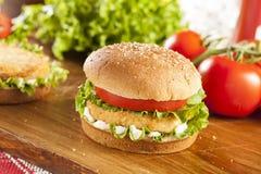 Breaded Chicken Patty Sandwich on a Bun Royalty Free Stock Image