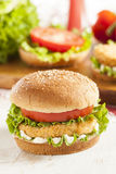 Breaded Chicken Patty Sandwich on a Bun. With Lettuce and Tomato Stock Images