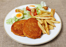 Breaded Chicken steak fries and salad Stock Image