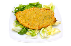 Breaded cutlet with salad Royalty Free Stock Image