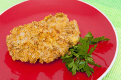Breaded cutlets. Cutlets breaded with oatmeal on the red plate Royalty Free Stock Photo