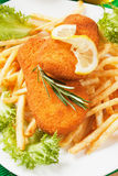 Breaded fish and french fries Stock Image