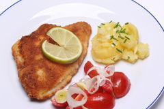 Breaded fish with potato salad Stock Photos