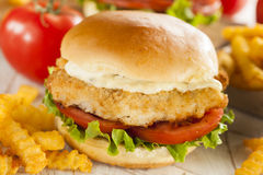 Breaded Fish Sandwich with Tartar Sauce Royalty Free Stock Photos