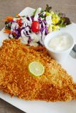 Breaded fish served with salad and tartar sauce. Stock Photo