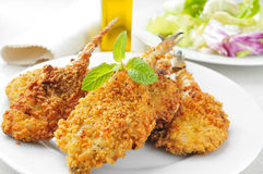 Breaded and fried hakes Stock Photography