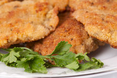 Breaded Fried Meat and Parsley Royalty Free Stock Photography