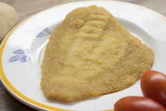Breaded and fried sole fillet Stock Photos