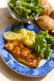 Breaded Pork Chop On The Plate Stock Photo