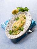 Breaded sole fish with parsley Royalty Free Stock Photos