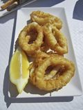 Breaded squid Royalty Free Stock Images