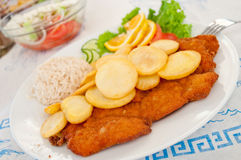 Breaded steak with potato and rice Royalty Free Stock Photography