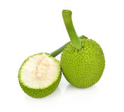 Breadfruit isolate on white background. Royalty Free Stock Images