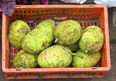 Breadfruits in red plastic box , asian market, India Stock Photos
