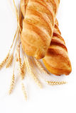 Breads. Fresh bread over white background Stock Image