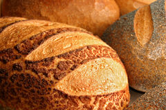 Breads. Fresh baked various kind of breads stock photo