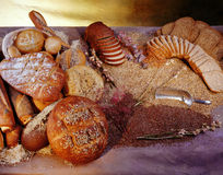Breads. Assorted kinds of Breads Stock Images