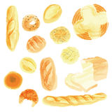 Breads. Illustrarion drawn with transparent watercolor paint Royalty Free Stock Photos