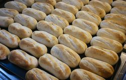 Breads. Tray of freshly baked breads stock photography