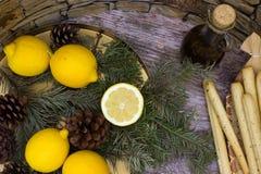 Breadsticksgrissini op rieten plaat, citroenen, en olijfolie stock foto