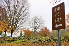 Break for the dog. A `canine rest area` sign points the way for owners to walk their dogs at a Connecticut rest area. November fall foliage has fallen and piles stock photo