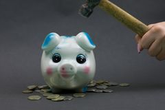 Break a piggy bank for lack of funds. We dilute a coin box to pay a dream which have taken on credit Stock Images