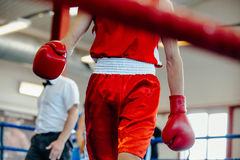 Break between rounds. Male boxer goes corner ring Stock Photography