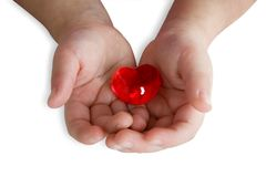 Breakable heart. Hands of an child hold a heart on white stock photos