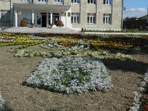 The breakdown of the flower garden. Stock Photo