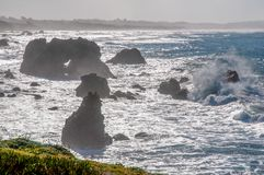 Sonoma Coast Surf stock images