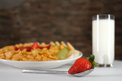 Breakfast. Fruit salad with milk Royalty Free Stock Image